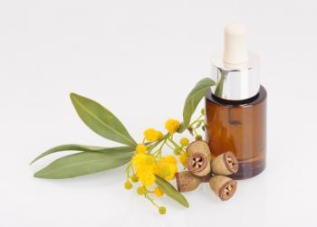 A bottle of eucalyptus oil with some leaves.