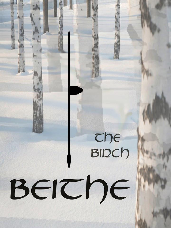 birch-beithe