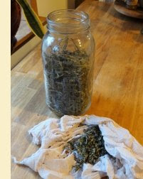 Tulsi herb to be infused