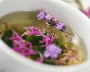 herbal-tea-cup
