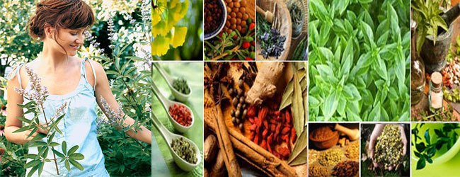 herbs-and-oils-heal-it