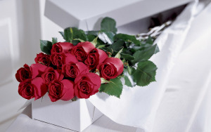 love_romance_mood_roses_red_bouquet_1920x1200