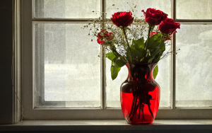 roses_vase_window_flowers_1920x1200