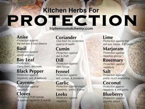 kitchen-herbs-for-protection-image-triple-moon-alchemy
