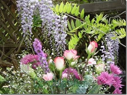 beltaneflowers