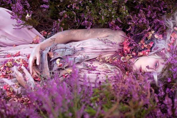 pink_dreamer-1575938