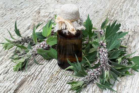 motherwort with tincture