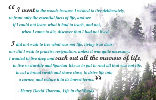 I went to the woods because I wished to live deliberately...
