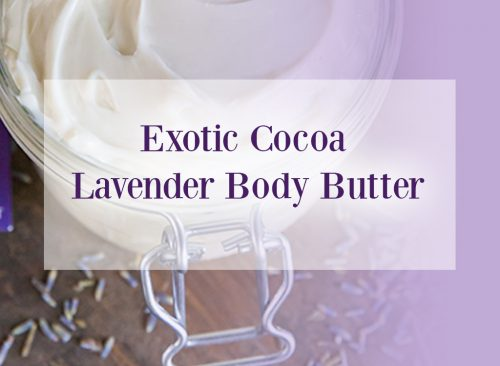 Exotic Cocoa Lavender Body Butter