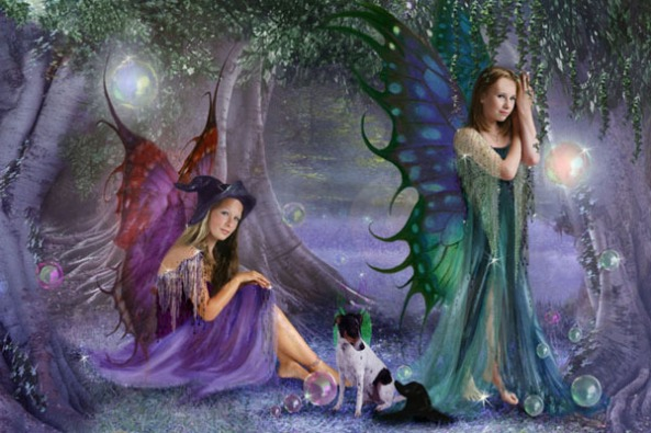 fairy and witch 2