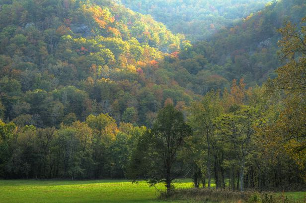 Fall_in_the_Ozarks