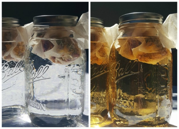 Summer Solstice Sun Tea Recipe | The Witch of Lupine Hollow