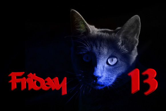 Friday13thCat