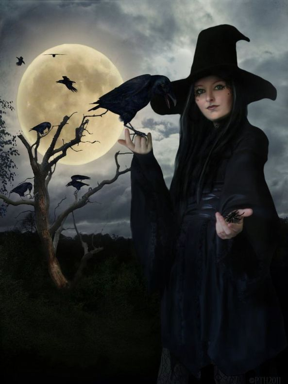 witchycrows
