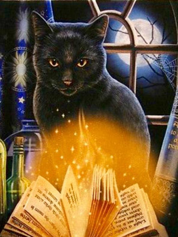 fullmoonblackcat
