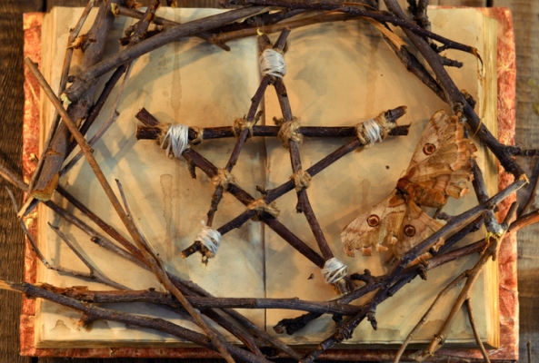 Wicca pentagram, moth - death symbol, and tree branches