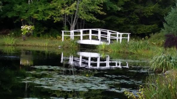 Peace Village Bridge Reflection